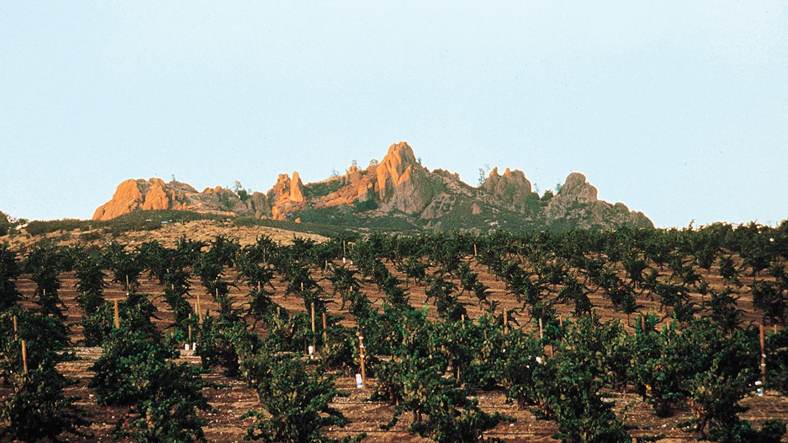 Foley Family Wines Buys Chalone Vineyards