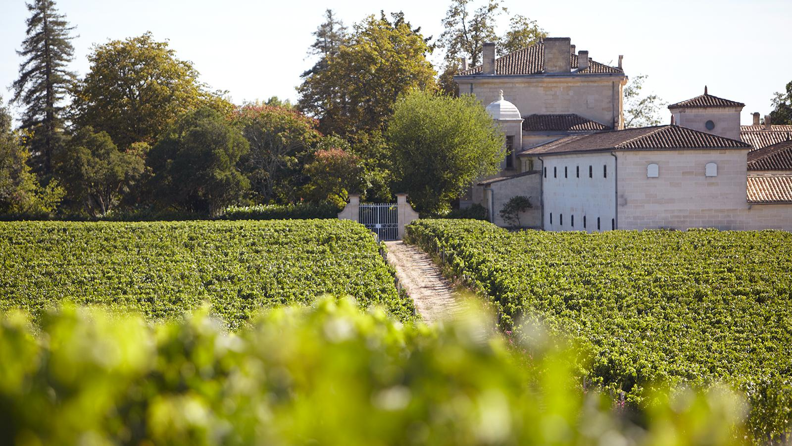 2016 Bordeaux Wine Futures Prices and Analysis: Latest Updates