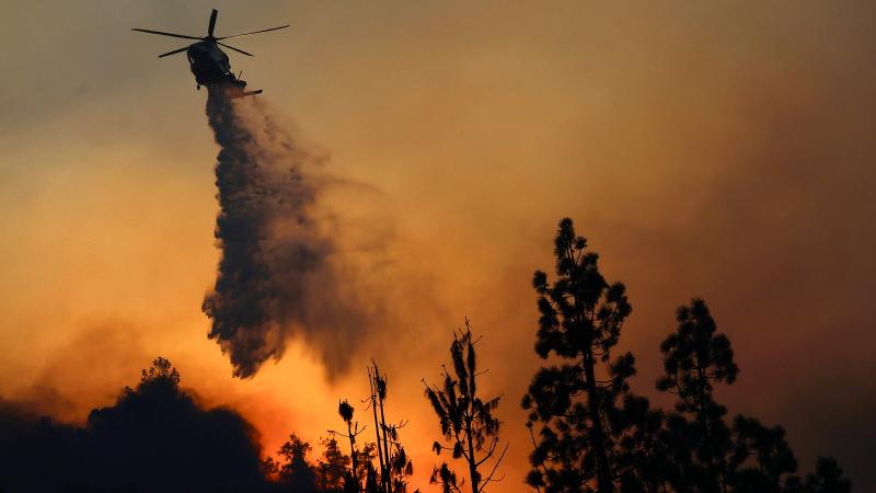 Updated: Winemakers Worry as Wildfires Rage in Southern California