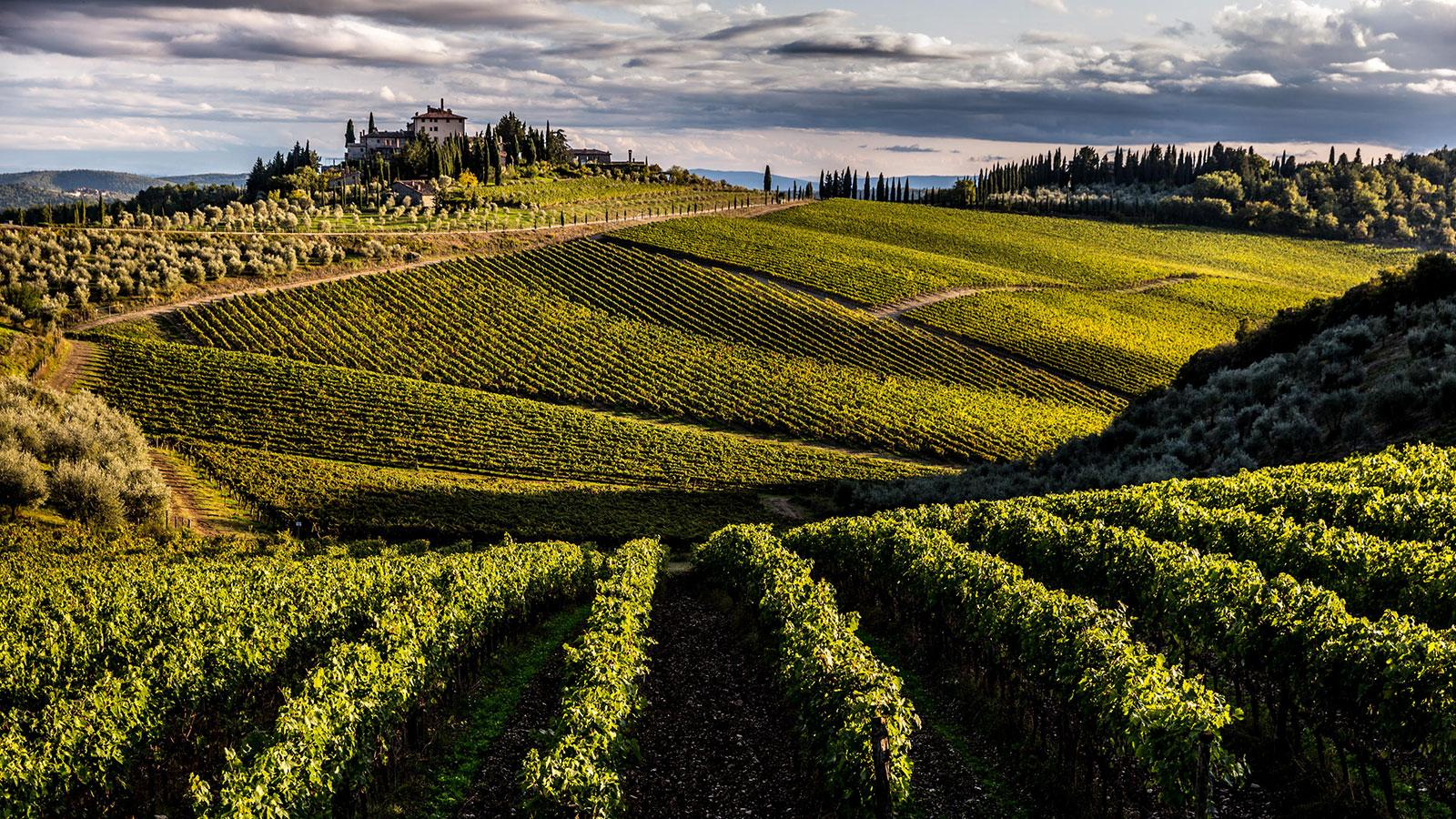 Italian Wine Aims to Up Its Game in the United States