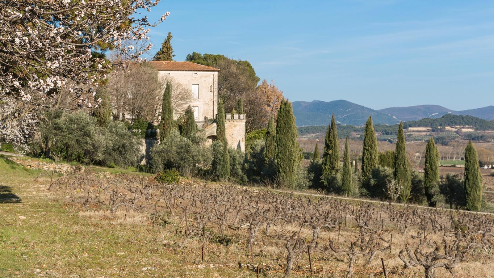 Exclusive: St.-Cosme's Louis Barruol Purchases Vinsobres Estate in Southern Rhône