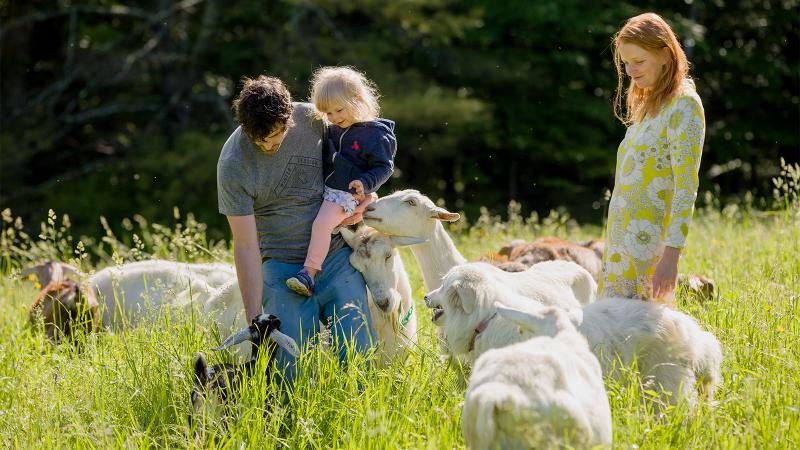 The owners with their young daughter, several goats and sheepdog