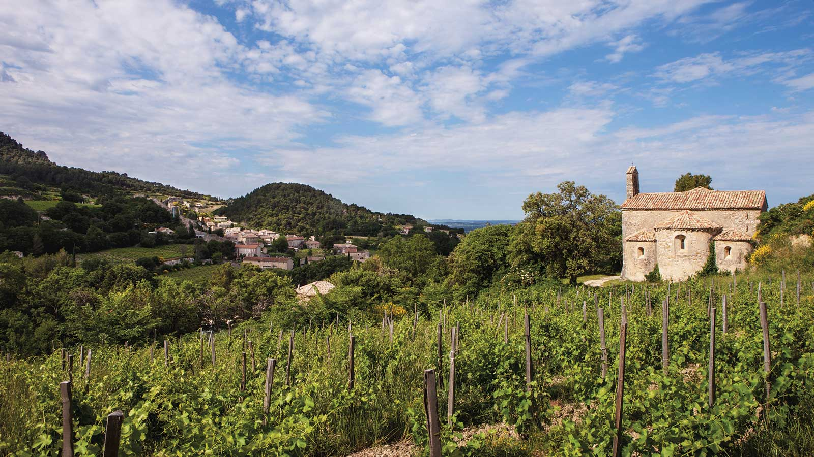 9 Southern Rhône Wines for Late-Summer Sipping