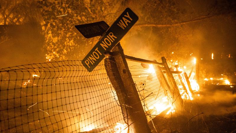 The Kincade Fire burns a fence and road sign in Windsor, Calif. on Sunday, Oct. 27, 2019.