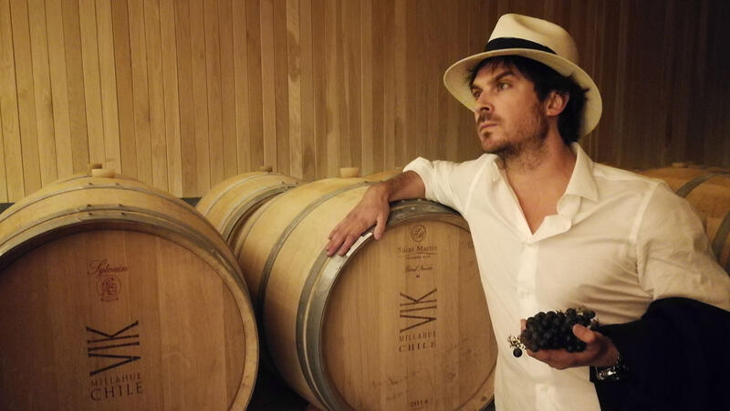 Ian Somerhalder in the winery at Vik