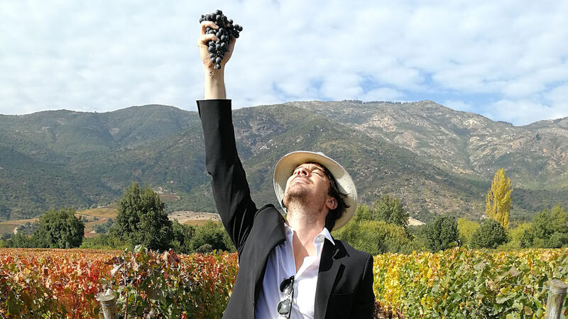 Ian Somerhalder in the vineyard at Vik