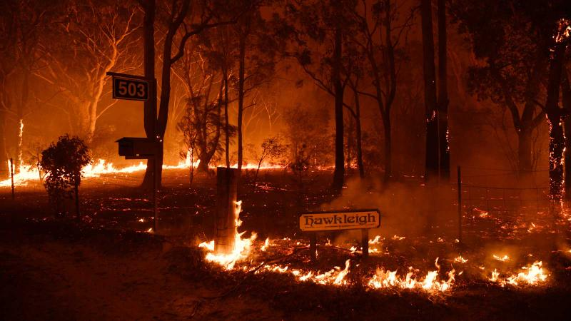 Australian Wildfires Scorch a Third of Vineyards in Adelaide Hills