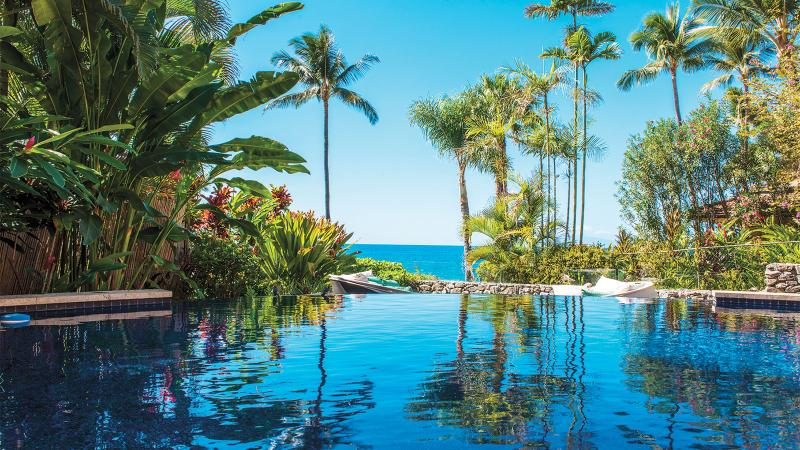 Infinity pool surrounded by tall palm trees and facing the Pacific Ocean