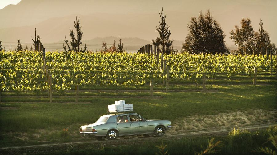 Dog Point's vineyards were planted in the 1980s at the intersection of Marlborough's Omaka and Brancott valleys.