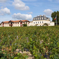 Château Pontet-Canet's 2019 futures will arrive at U.S. retailers at just half the price of the 2016 and 2015 vintages. But are consumers interested?Bordeaux Launches 2019 Futures Campaign Amid the Uncertainty of Pandemic