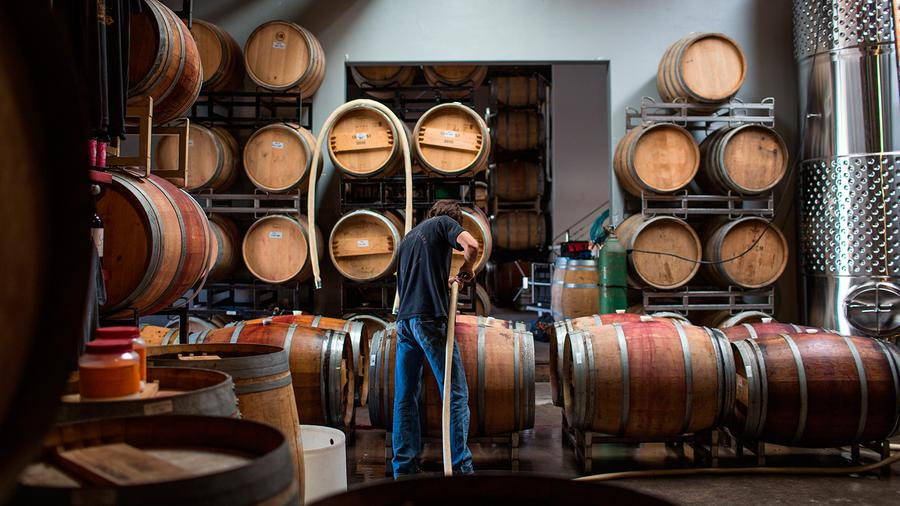 A wine professional in a barrel room