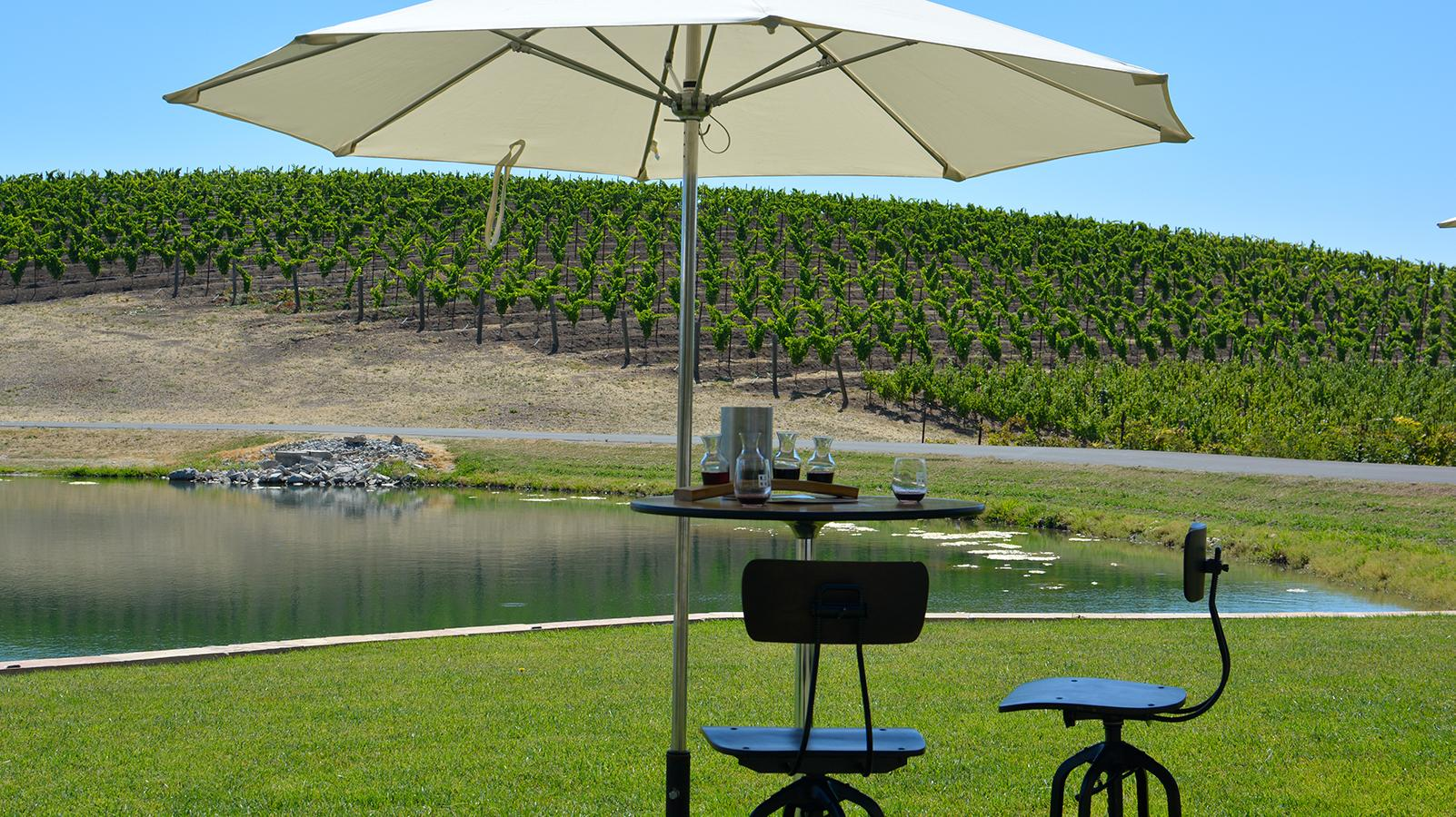 California Winery Tastings Forced Outside as COVID-19 Cases Spike