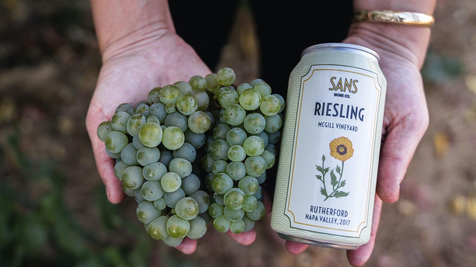 Top-Rated Pop-Tops: 15 Recommended Wines in Cans