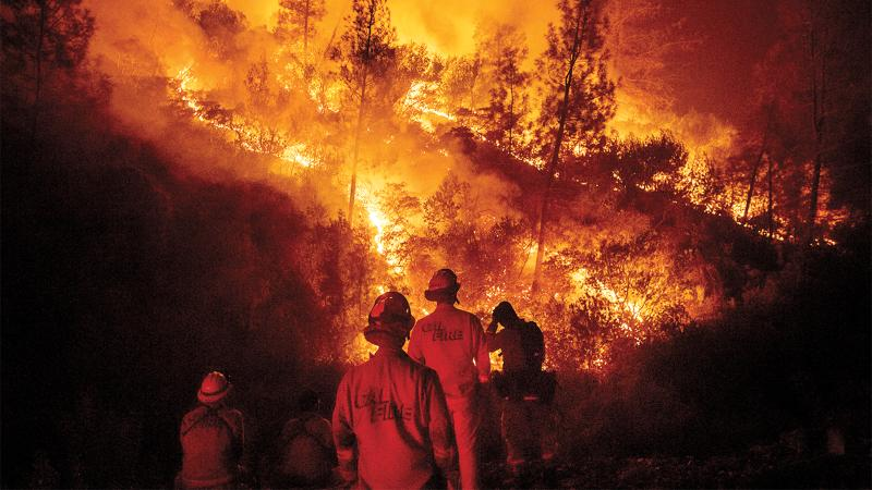 Another Rough Fire Season in California Wine Country